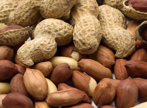 Арахис: калорийность, польза и вред, кому его