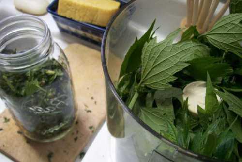 Рецепты домашней настойки из боярышника, секреты